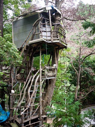 ネオ・キタロー村  ツリーハウス