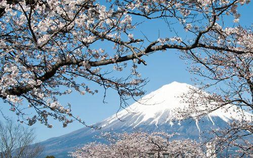 富士宮本宮浅間神社