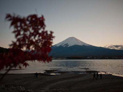 河口湖から見る夕暮れの富士さんともみじ