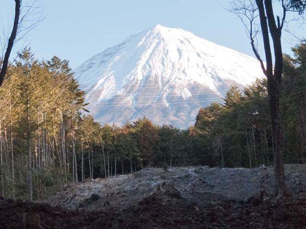 山宮浅間神社より望む霊峰富士