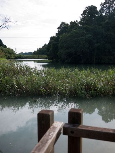 菊川の溜池3