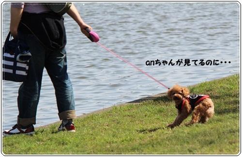 IMG_3621_20120503080527.jpg