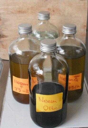 neeem-oil 3bottles