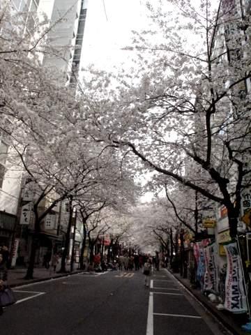 04-12 Japan 1077