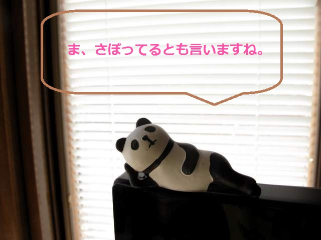パンダ語録 さぼり