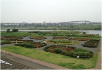 sagamigawa_rose_garden4.jpg