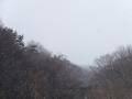 突然の雪降り
