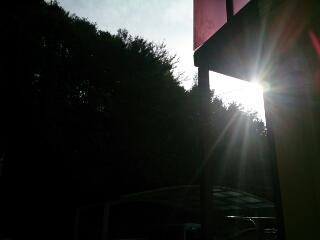 太陽がでてきた