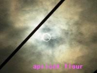 12年金環日食