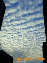 12年うろこ雲