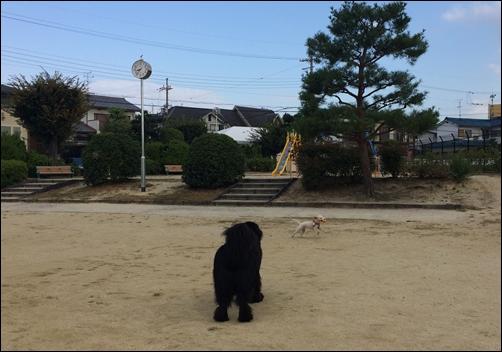 20141016__IMG_4980.jpg
