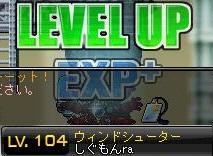 Maple120617_010225.jpg