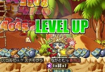 Maple120819_010905.jpg