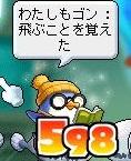 Maple120822_160308.jpg