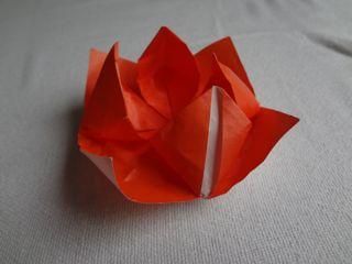 蓮の折り紙