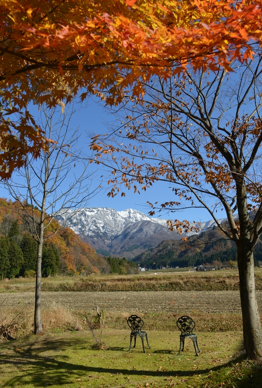 八海山  紅葉の樹と共に-2