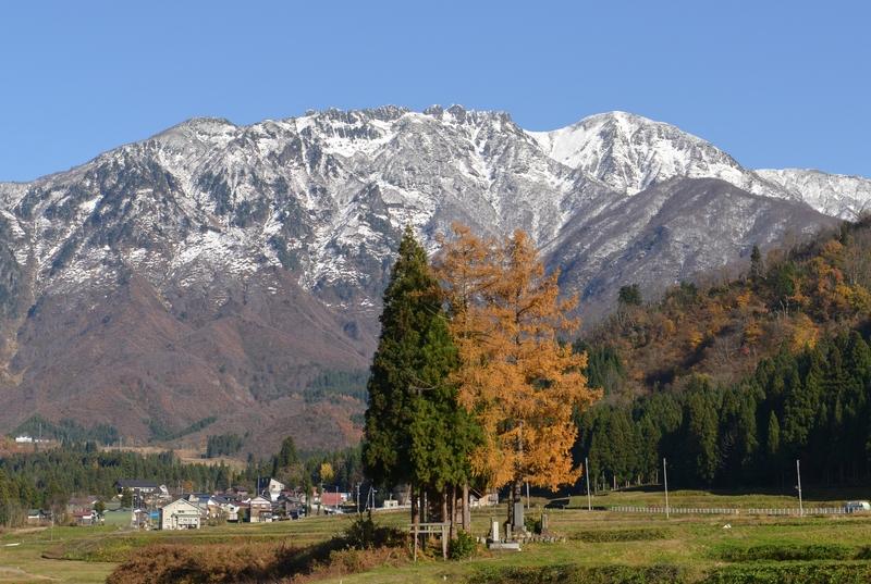 八海山  紅葉の樹と共に-1