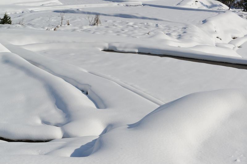 雪 雪 雪-1
