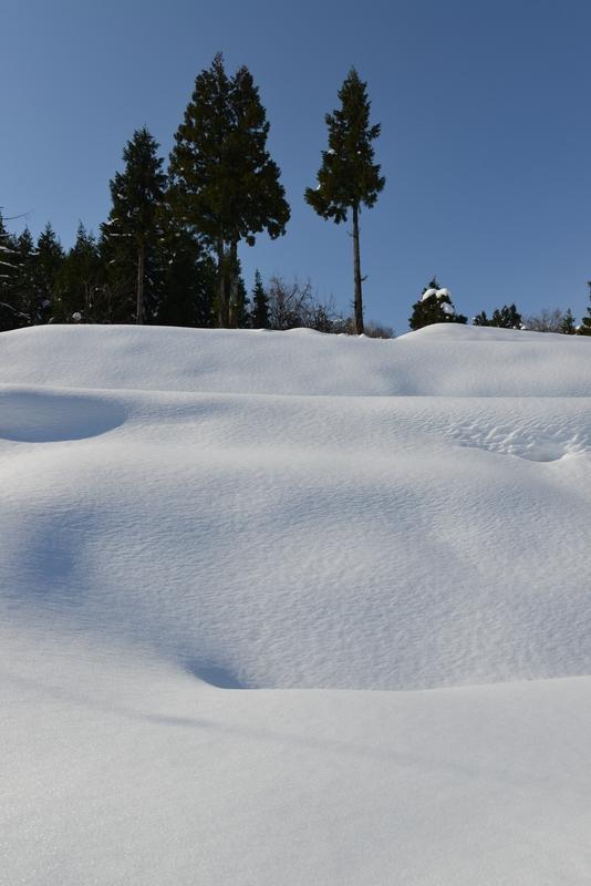 雪 雪 雪-2