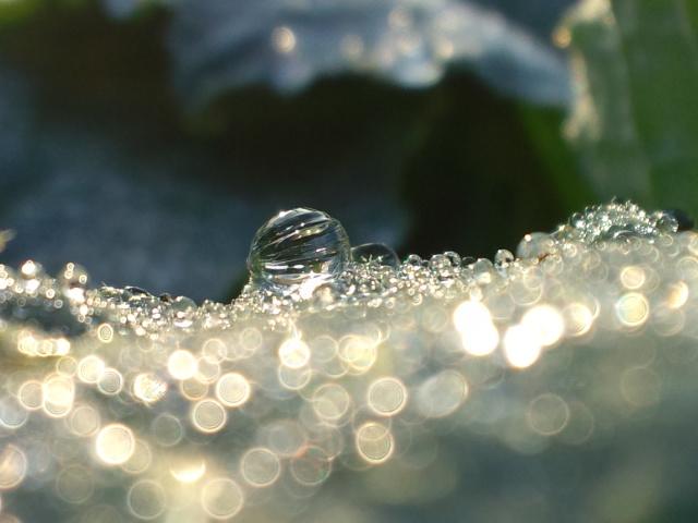 0214水の宝石。。。vプレゼントに。。