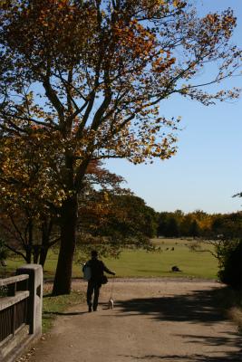 昭和記念公園 2007.11.13 036