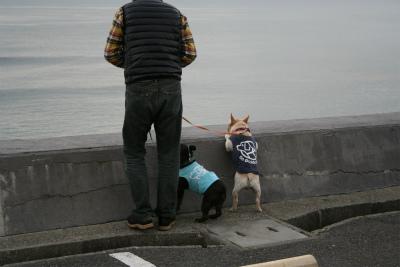 2012.11.5 鎌倉・湘南 091