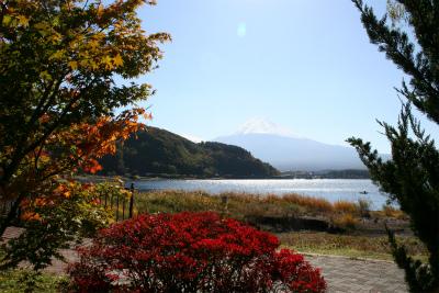 2012.11.7.8  山梨・朝霧 017