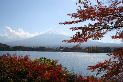 2012.11.7.8  山梨・朝霧 055