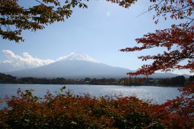 2012.11.7.8  山梨・朝霧 057