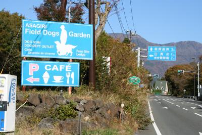 2012.11.7.8  山梨・朝霧 147