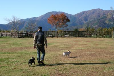 2012.11.7.8  山梨・朝霧 144