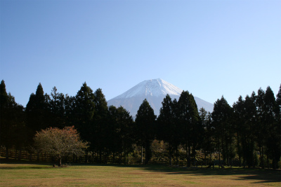 2012.11.7.8  山梨・朝霧 145