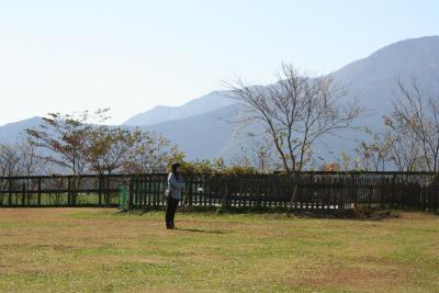 2012.11.7.8  山梨・朝霧 162