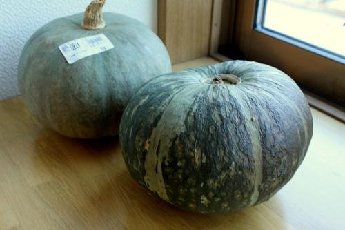 12.09.19かぼちゃ