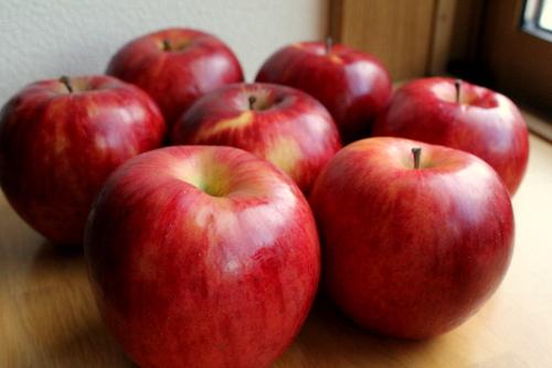 12.10.24大量りんご