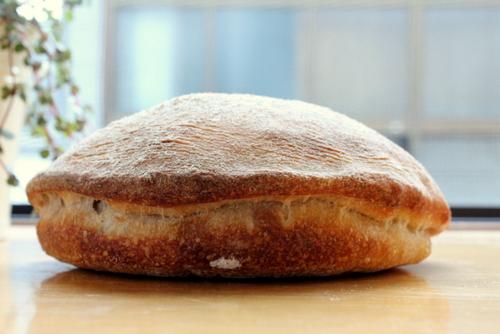 12.10.31ルヴァンのパン_貝?