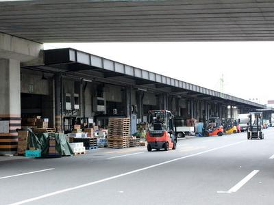 FC2用2012.07.20岡山中央卸売市場1