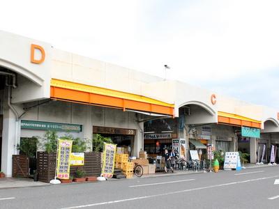 FC2用2012.07.20岡山中央卸売市場2
