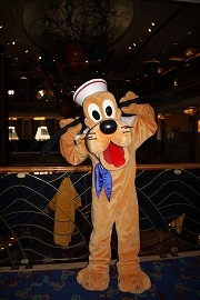 DCL20129 217