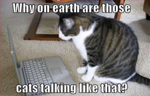 Eloquent_Cat.jpg