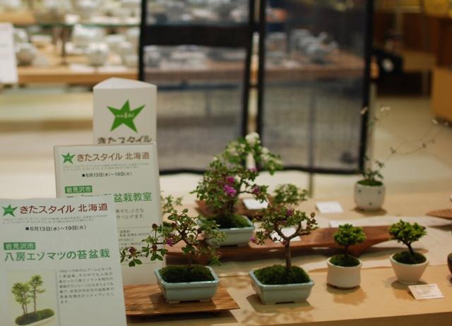 201206札幌丸井きたスタ1