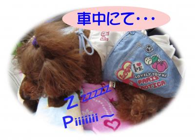 0013_convert_20120918162753.jpg