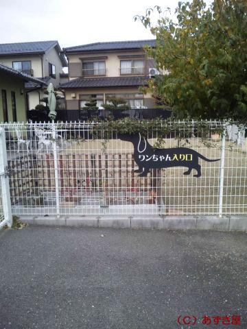 azuki1471.jpg