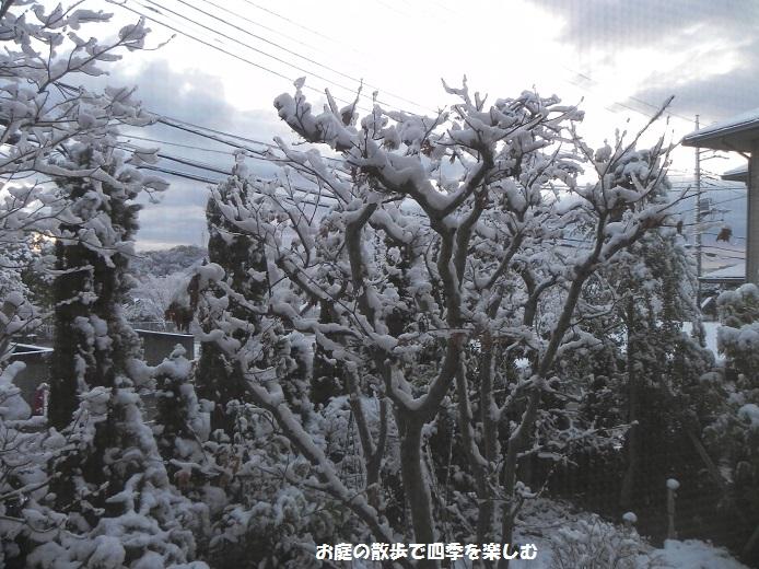 yuki2_20140205175829cae.jpg