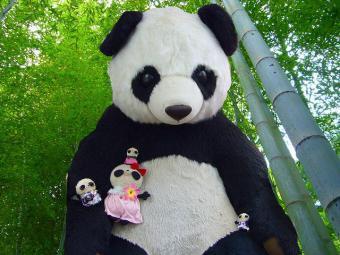 上野にパンダの赤ちゃん誕生記念