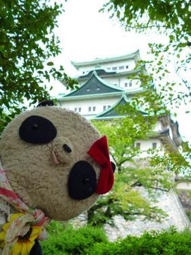 ばぶちゃん名古屋城で「どーん」