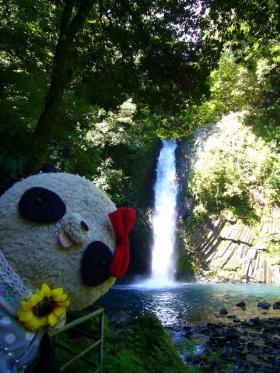 ばぶちゃん浄蓮の滝でどーん!