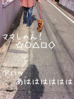 moblog_4abaa1b5.jpg