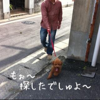moblog_4f0388d4.jpg