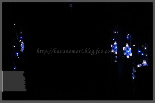 クリスマス イルミネーション ツリー 20141209